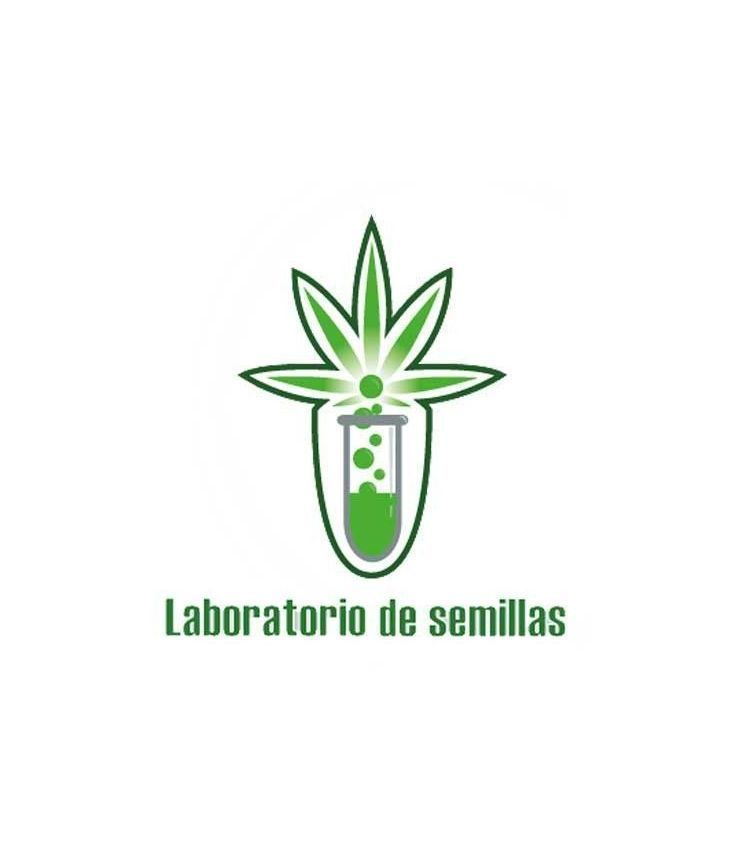 LABORATORIO DE SEMILLAS