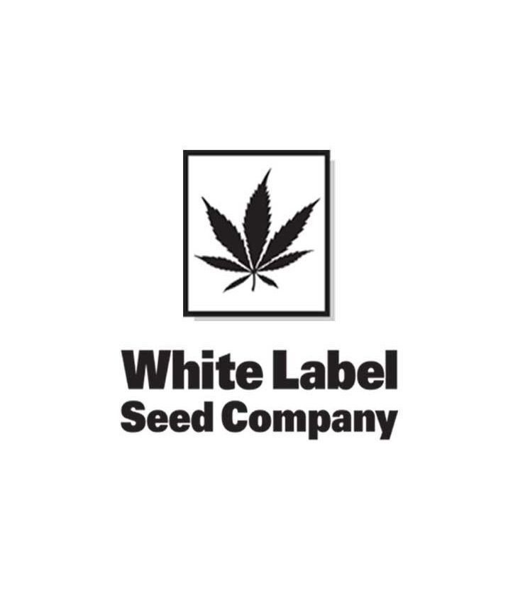 SEMILLAS WHITE LABEL