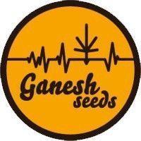 GANESH SEEDS