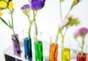 ¿El CBD Cannabidiol aparece en las pruebas de drogas?
