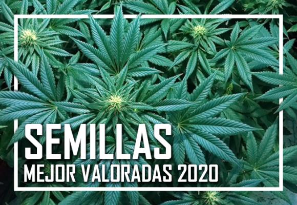 MEJORES SEMILLAS DE MARIHUANA 2020