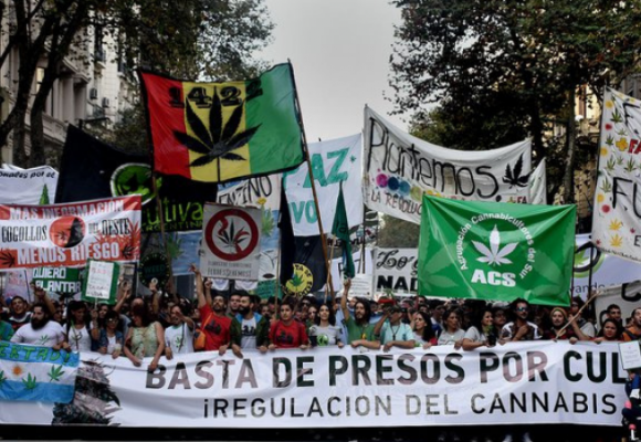ARGENTINA LEGALIZA EL AUTOCULTIVO DE CANNABIS MEDICINAL